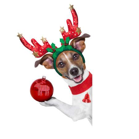 renos de navidad: reno del perro detrás de una pancarta en blanco con una bola de navidad