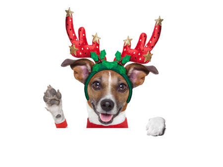 reindeer dog behind a blank banner with waving with paw