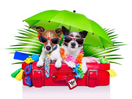 빨간 가방에 휴가 개는 관광객으로 옷을 입고