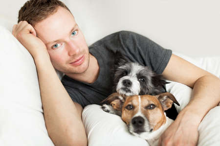 handsome men: dog owner in bed with two cute dogs Stock Photo