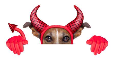 devil dog behind a blank white banner photo