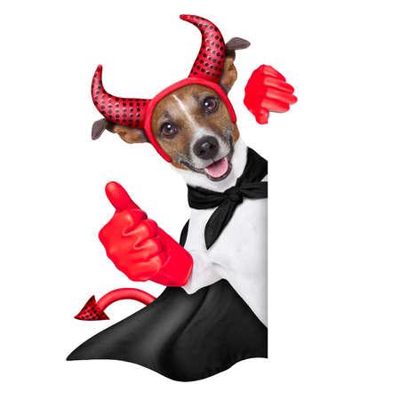 perro asustado: diablo perro detr�s de una bandera blanca con el pulgar arriba Foto de archivo