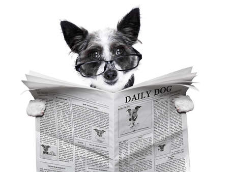 print media: dog reading and holding a blank newspaper