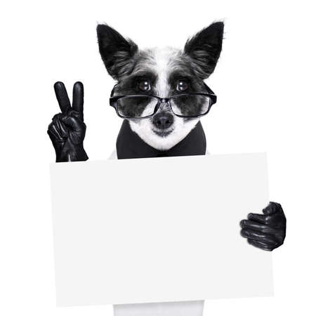 smocking: peace  fingers dog with black gloves and glasses holding a banner Stock Photo