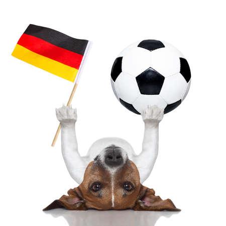thể dục: con chó bóng đá cân bằng một quả bóng đá và một lá cờ Đức