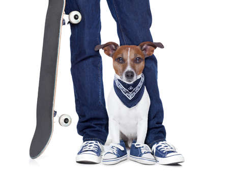 dog owner with dog both wearing sneakers and a skateboard photo