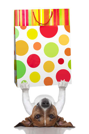dog holding a shopping bag lying upside down photo