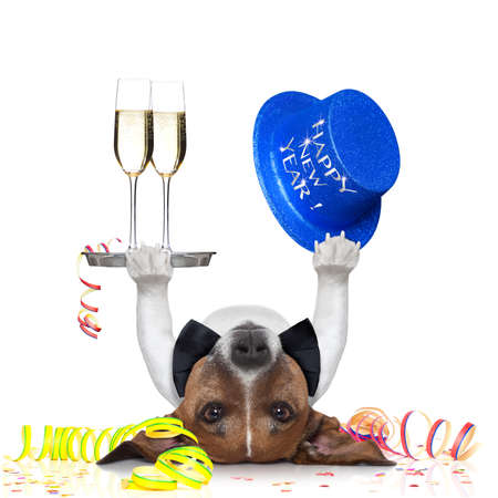 christmas catering: dog celebrating with champagne and a blue happy new year hat lying upside down
