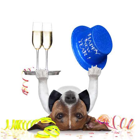hond vieren met champagne en een blauwe Gelukkig Nieuwjaar hoed ligt ondersteboven
