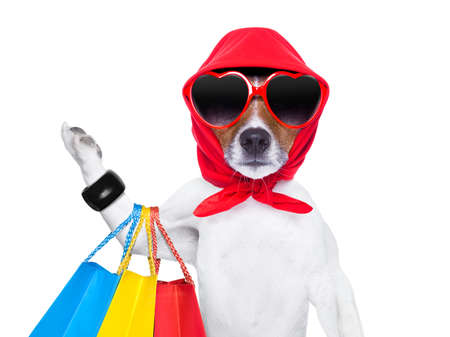 diva chien du shopping comme un pro, tenant un bouquet de sacs