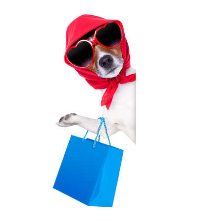 shopping diva dog holding a blue shopping bag wearing sunglasses photo