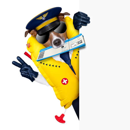 emergency vest: check in pilot dog with boarding pass beside a white placard Stock Photo