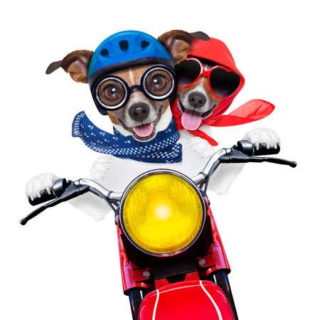 casco moto: Pareja en moto a la velocidad con casco y gafas de locos Foto de archivo