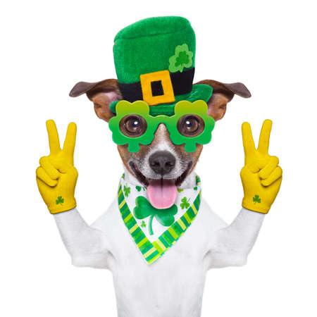 patricks day: perro del d�a de los patricks del st con los dedos de la paz