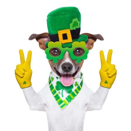 st patricks  day dog with peace fingers photo