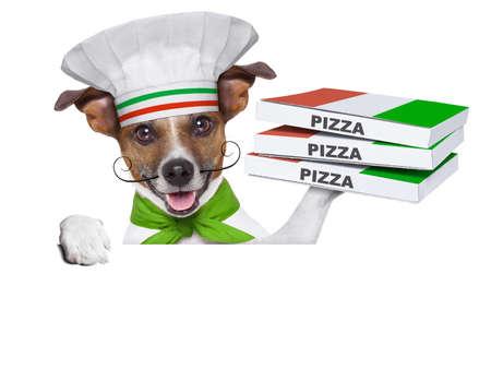 perro de entrega de pizza con una pila de cajas de pizza en un cartel en blanco