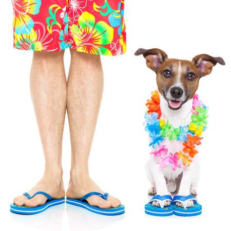 in the summer: perro y el dueño listo para ir de vacaciones de verano