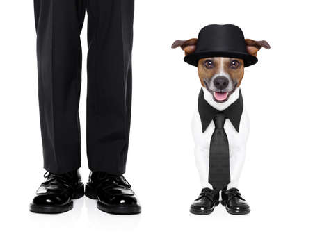 tuxedo dog and owner standing side by side Stock Photo