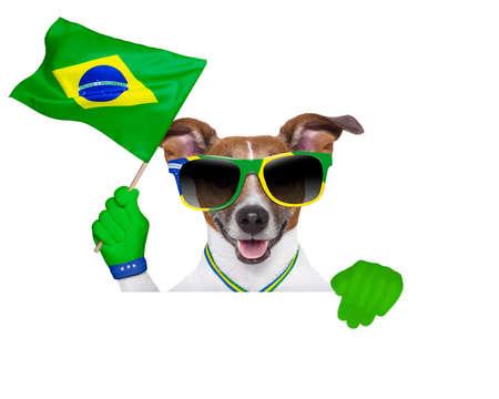 dog waving brazil flag photo