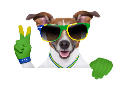 brazil dog peace victory  fingers photo
