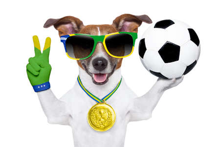 brazil dog holding soccer ball and victory peace fingers