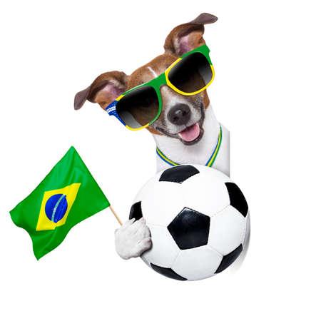 german dog waving flag behind banner photo