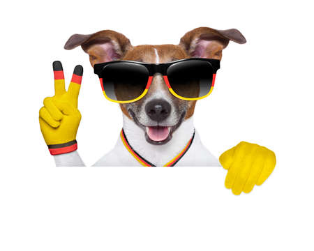 german dog  with peace victory fingers photo