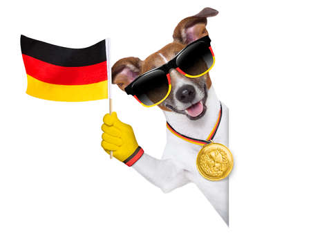 german dog  waving flag behind banner photo