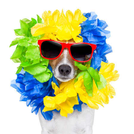 crazy silly brazilian dog with red sunglasses and flower chain photo