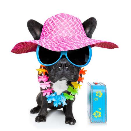 buldog: perro de vacaciones con gafas de sol de lujo y divertida cadena de flores con el equipaje