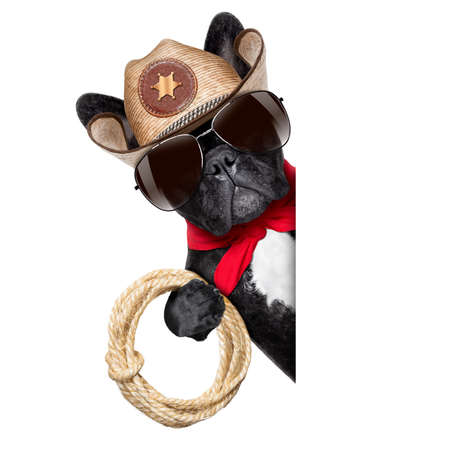 cowboy dog beside a white blank banner or placard photo