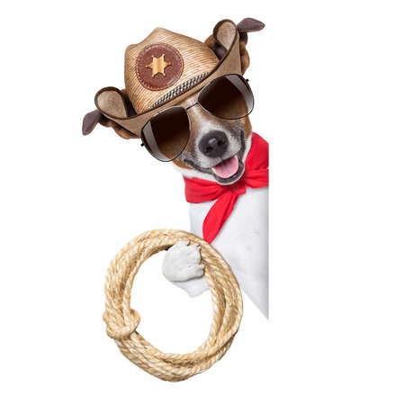 cool cowboy dog behind white blank banner or placard photo