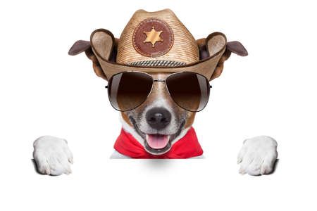 cool cowboy dog hiding  behind white blank banner or placard