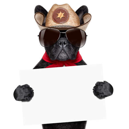 cool cowboy dog holding a white blank big banner or placard