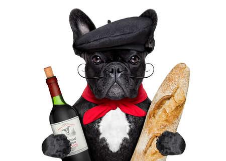 alimentos y bebidas: bulldog francés con vino tinto y baguette y un sombrero francés