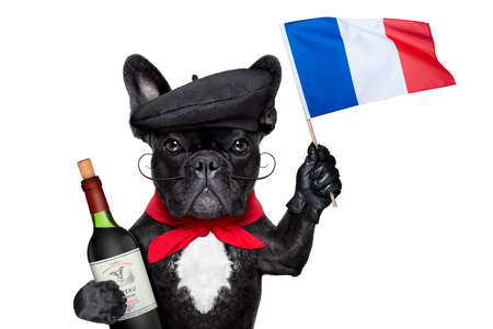 french bulldog with red wine waving flag of france photo