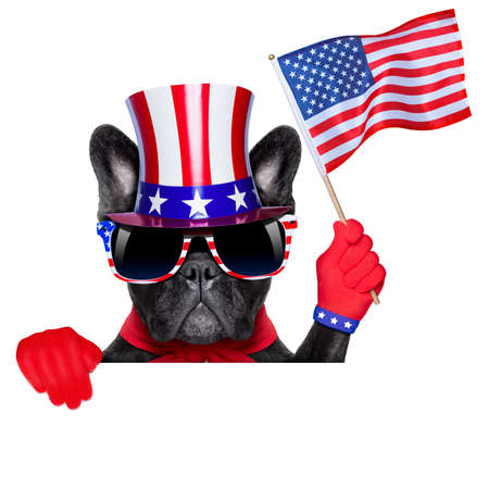 french bulldog behind a white and blank banner waving flag usa photo