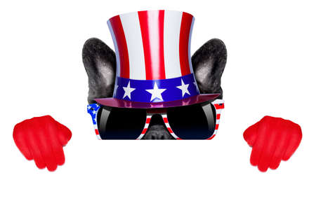 french bulldog  as american hiding behind a blank and white banner or placard photo