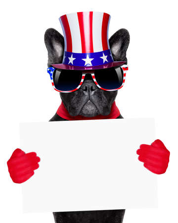 french bulldog  as american holding a white blank banner or placard