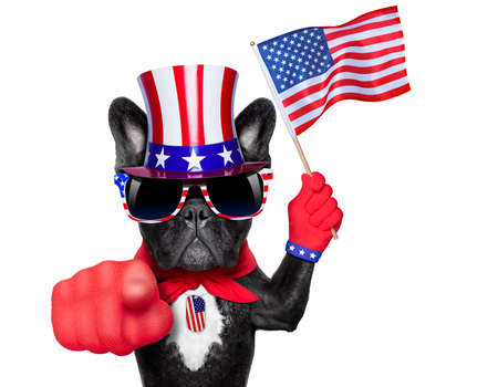 french bulldog waving a flag of usa and pointing at you with one finger photo