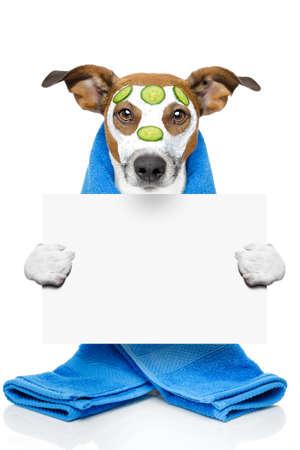 wellness dog spa Stock Photo