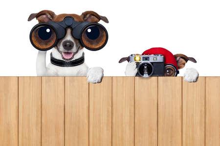 Vater und Sohn Hunde hinter Holzzaun Spionage mit Kamera und Fernglas