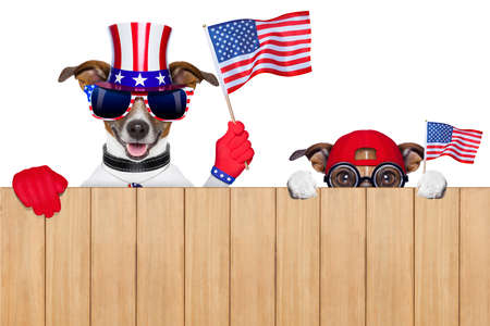 two dogs watching 4th of july parade Stock Photo