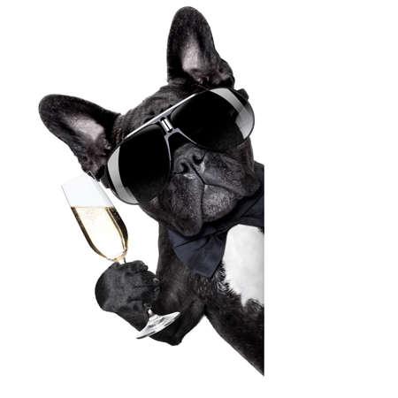 pes opékání za bílé prázdné banner nebo cedulky Reklamní fotografie
