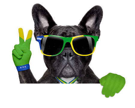 brazil soccer dog  with victory or peace fingers above blank white banner or placard photo