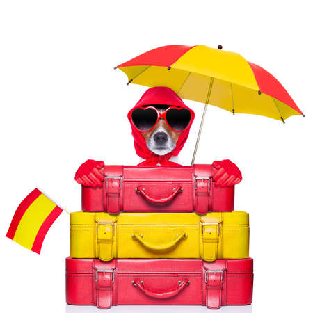 dog from spain with too much luggage on holidays Stock Photo