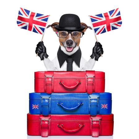 dog waving flags of united kingdom with lugagge