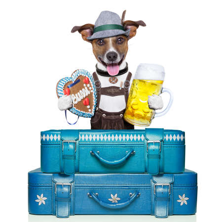 oktoberfest dog with luggage, beer, and gingerbread heart photo