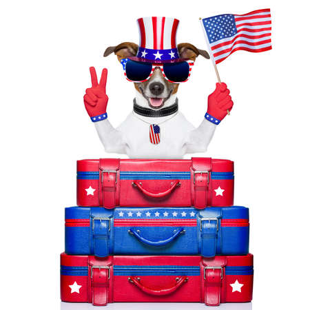 dog celebrating independence day  waving a flag with peace or victory fingers Stock Photo
