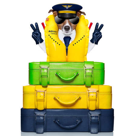 dog  behind of luggage as an airline captain with life vest photo